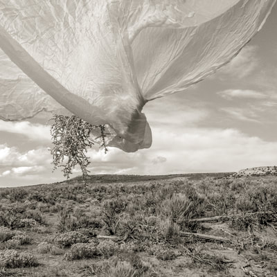 Fine art photographer David Lee Black Black photographs tumbleweed and veil and wind, clouds and sky. in Piedmont, Wyoming.