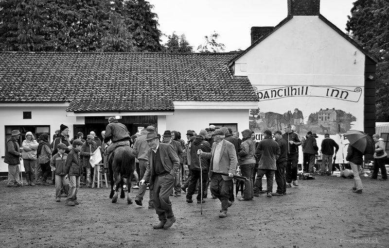 Nothing says Ireland like a pub that is only open once per year at an ancient horse fair and a lad tries to ride his pony into the front door with the help of a pint of two!