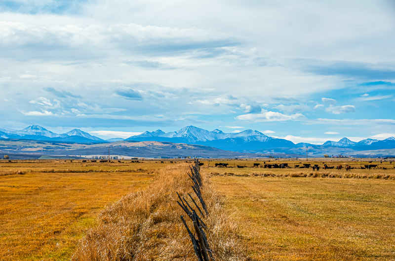Noted Boston fine art photographer David Lee Black explores the landscape of the mountains and prairie   of Piedmont, Wyoming