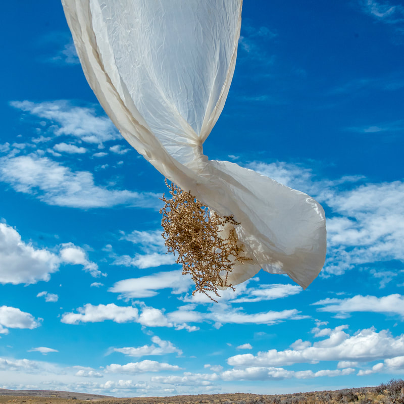 Noted Boston fine art photographer David Lee Black explores Piedmont, Wyoming with veil and tumbleweed.